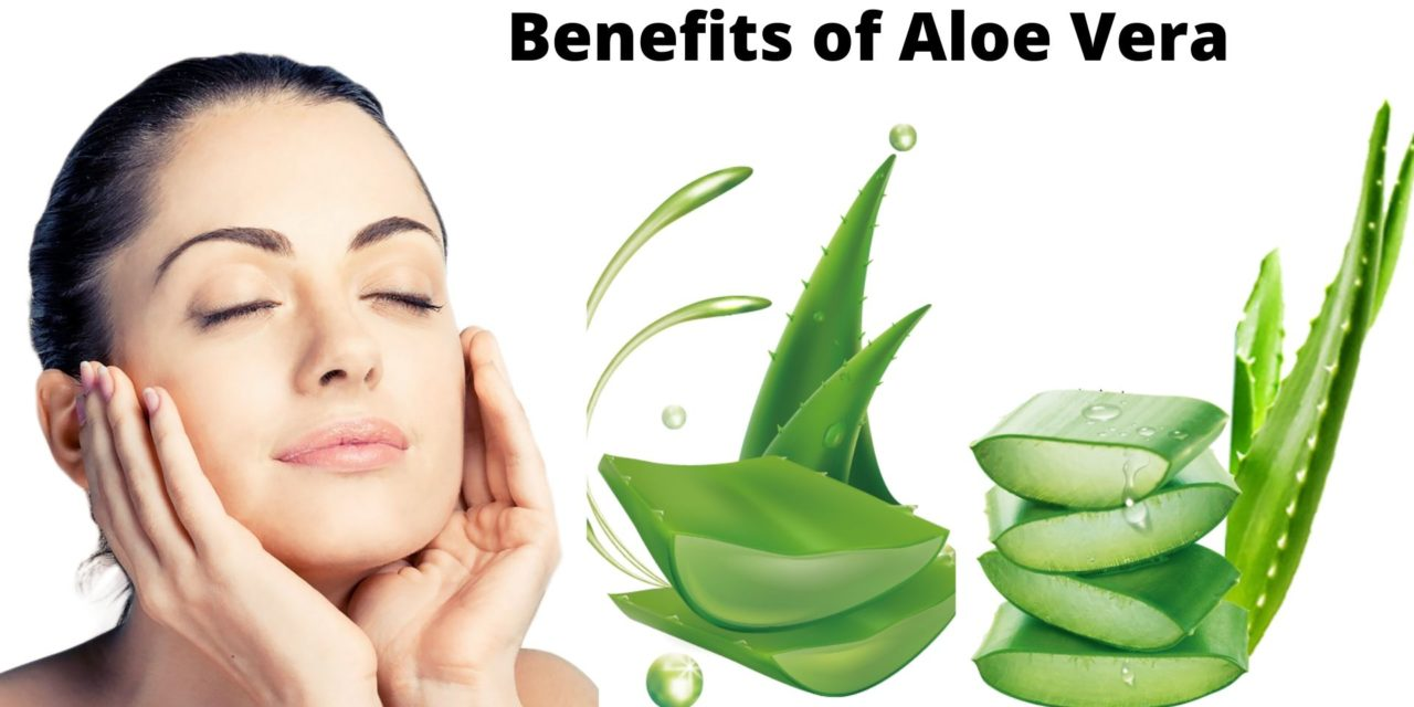 10 Aloe Vera Benefits You Must Know | Aloe Vera Uses