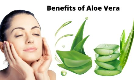 10 Aloe Vera Benefits You Must Know | Aloe Vera Uses