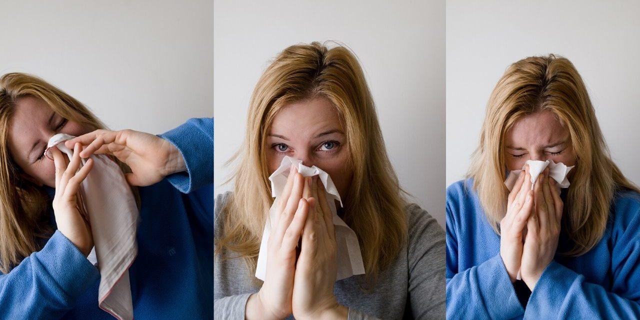 Best Home Remedies For Allergies